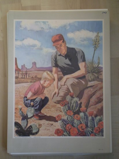 God Lets Us See His Wonders Providence Lithograph 1963 Timmins