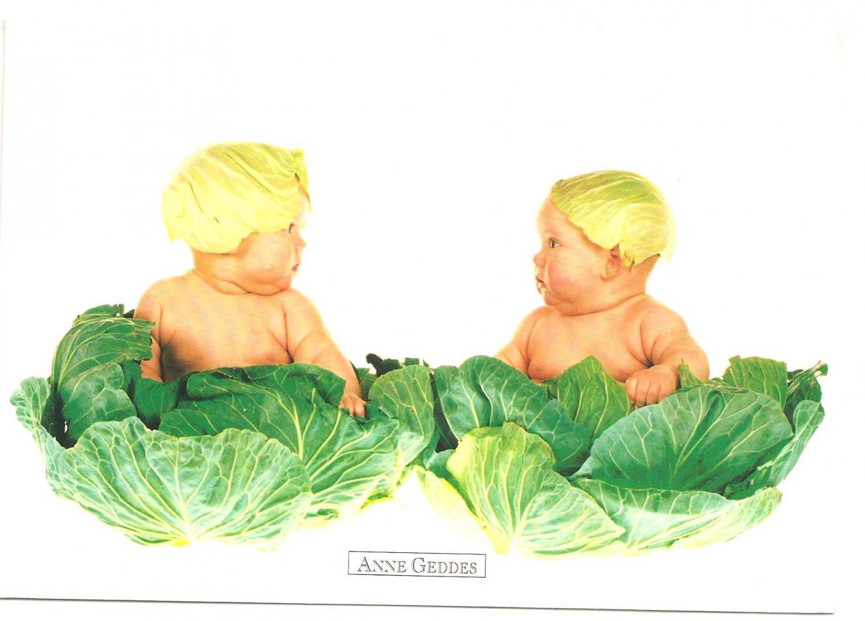 Anne Geddes Postcard 1995 605-024 Baby Cabbage 4x6