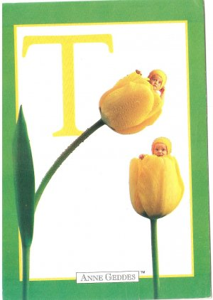 Anne Geddes Postcard 1995 605-073 T is for Tulip Baby 4x6