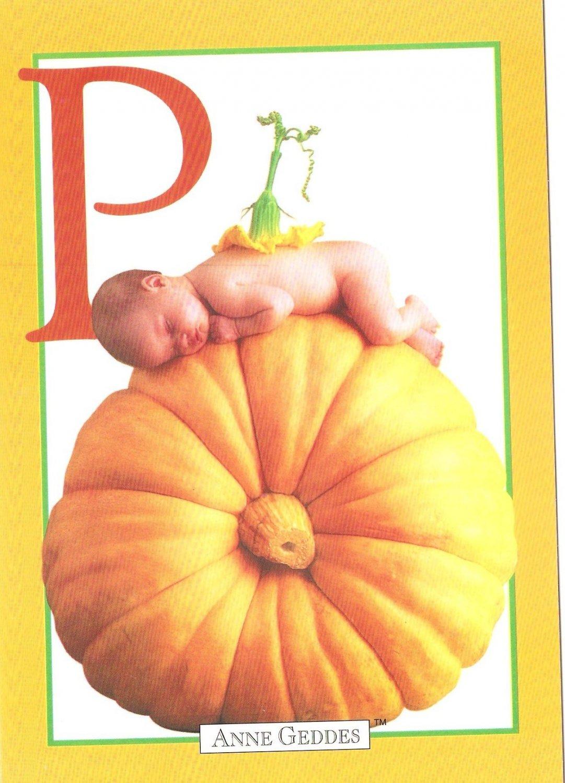Anne Geddes Postcard 1995 605-069 P is for Pumpkin Baby 4x6