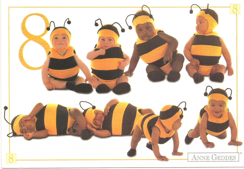 Anne Geddes Postcard 1995 605-087 8 Bumblebee Baby 4x6