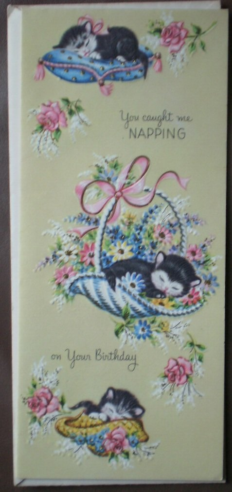 Vintage Birthday Card Cat Kitten Napping Sunshine Card 25x3019 Belated