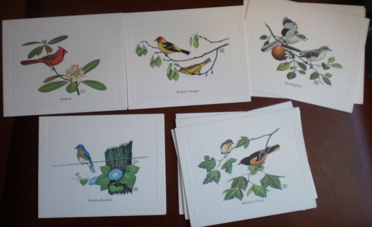 Birds America Mark Note Cards Blank Chuck Ripper Cardinal Mockingbird Bluebird Oriole tanager