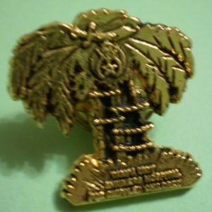Shriners Children&#039;s Hospital Pin Palm Tree Tampa Unit Florida Vintage Goldtone Metal
