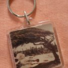 Aruba Key Ring Vintage Beach Plastic Tree