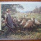 Bucentaur Gallery Best Wishes Note Card Shepherd's Daughter Blacklock