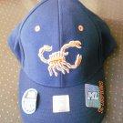 UTB University Texas Brownsville Scorpions Cap Hat