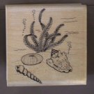 Rubber Stamp Underwater Shells 170-J Embossing Arts Sea Ocean