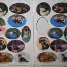 Current Stickers Cat Photographs Kittens 2 sheets Loose 1991 16746-5 Kitties