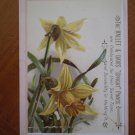 Hallet Davis Upright Pianos Trading Trade Card