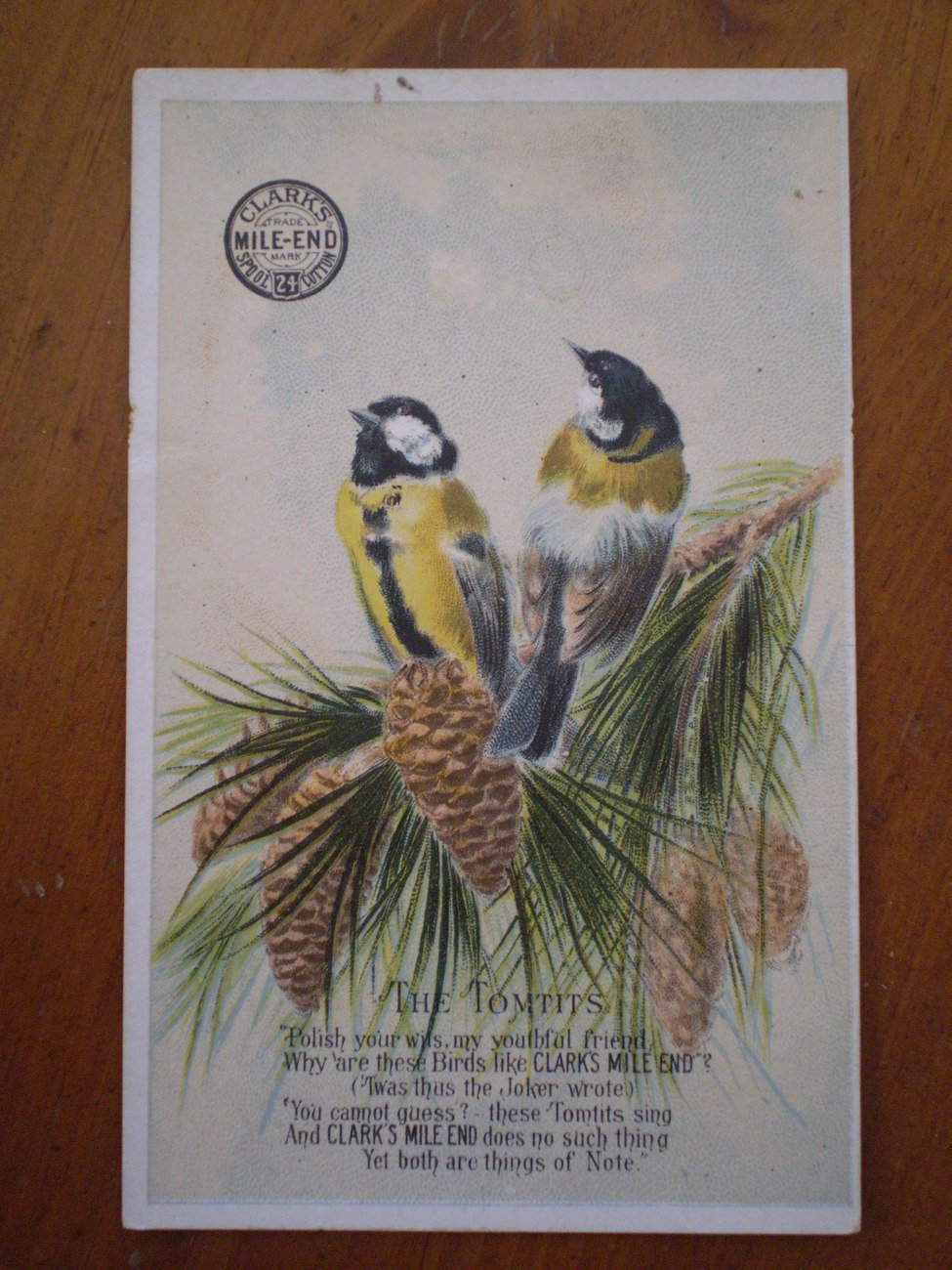 Clarks Mile End The Tomtits Birds Trading Trade Card