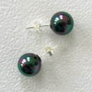 10mm Tahitian Black South Sea Shell Pearl Earrings
