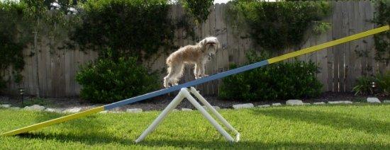 Adjustable Teeter / SeeSaw Base - Dog Agility Equipment