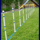 Weave Poles - Dog agility Equipment - Set of 12