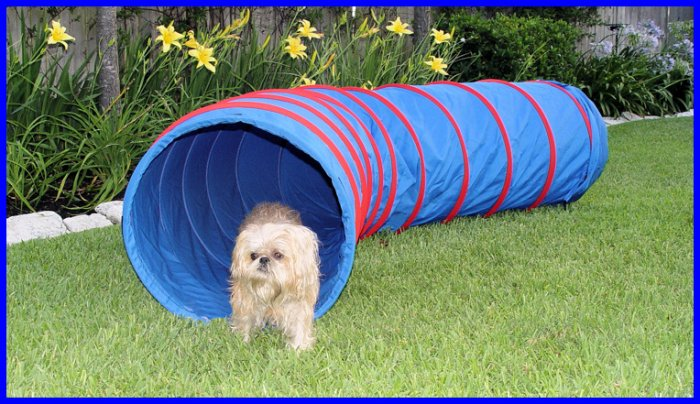 Dog Agility Tunnel - 9' x 22' Dog Agility Equipment