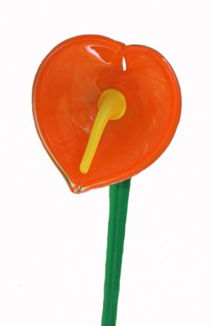 Czech Bohemian Art Glass Free Form Hand Blown Flower Orange Red Anthurium 15.5""