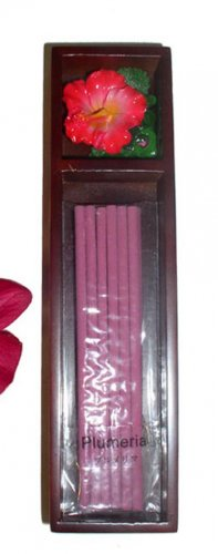 Hawaiian Plumeria Scented Incense Sticks Ceramic Hibiscus Flower Burner Gift Set