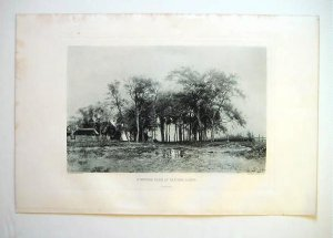 'A Wooded Farm at Van der Sande', by A. Stengelin, 1880's