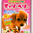 San-X Japan Cute Puppies Mini Envelopes with Stickers Kawaii