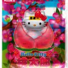 Sanrio Japan Hello Kitty Limited Region Letter Set in Folder 2002 Kawaii
