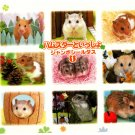 Bandai Japan Lovely Hamsters Jumbo Sealdass Booklet (A) 2000 Kawaii