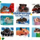 Bandai Japan Lovely Hamsters Jumbo Sealdass Booklet (B) 2000 Kawaii
