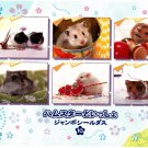 Bandai Japan Lovely Hamsters Jumbo Sealdass Booklet (D) 2001 Kawaii