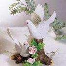Gorgeous Doves