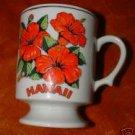 Hawaii State Flower Gold Trim Mug