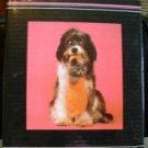 9  3/4 x 11 1/4 Puppy Kitty Photo Album