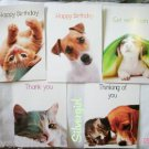 "5 Animal Greeting Card w Envelopes 6 1/8  x 4 1/2"" IFAW"
