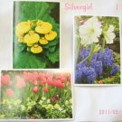 5 Flower Note Cards w White Envelopes 6 1/2  x 4 1/2""
