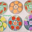 Fruits Handmade CD Disc Drink Coasters Set of 6