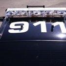Homeland Security - Domestic Terrorism In America