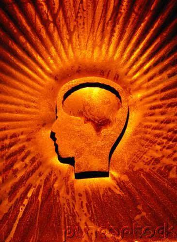 Memory & Cognition - Learning Theories