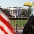 The American Presidency - Party Leadership - Part IV