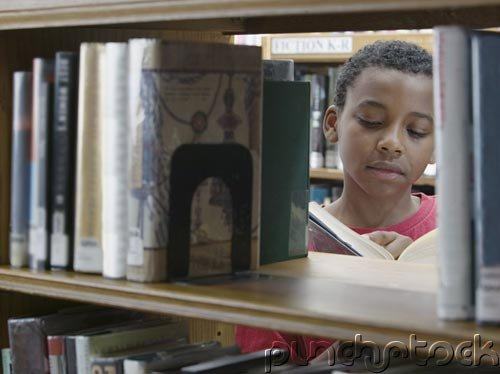 African American History - Literature