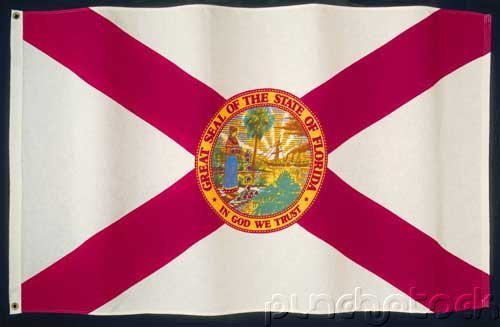 Florida State Constitution - For State & Federal Examinations