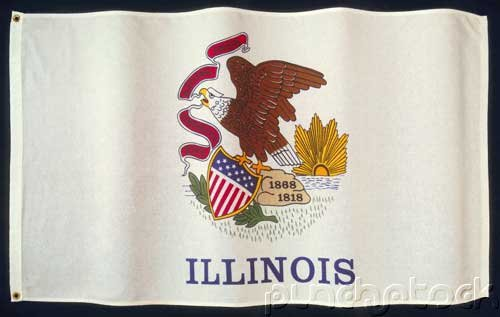 Illinois State Constitution - For State & Federal Examinations