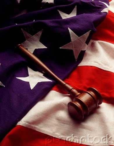 Environmental Law - The American Legal System