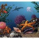 Ocean Life - Fragile Environments