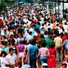 Biology At The Population Level - The Organization Of Populations
