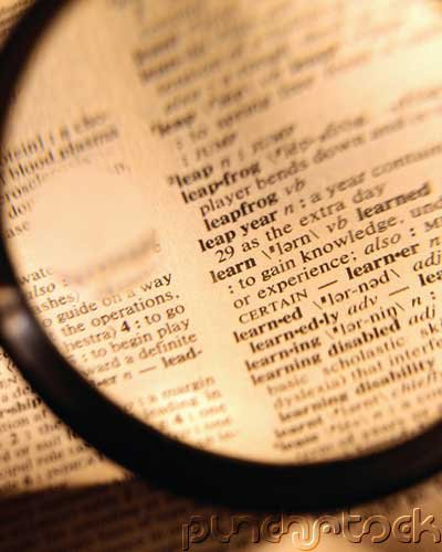 Reference Work - Sources Of Information - Dictionaries