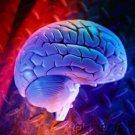 Sigmund Freud & Psychoanalysis - Nature & Origins Of Anxiety