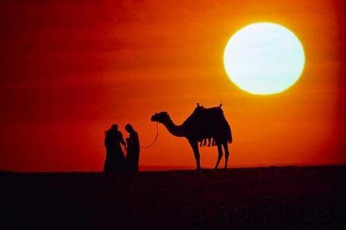 The Arabs - The Umayyad & Abbasid Empires - Education & The Development Of Fine Arts