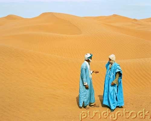 The Arabs - The Umayyad & Abbasid Empires - Abbasid Scientific & Literary Progress