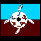 The History Of The Ojibwa - The Native American People Of North America
