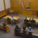 Business Law - Courts - An Introduction