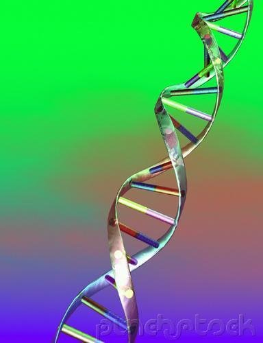 Perpetuation Of Life - DNA - The Thread Of Life