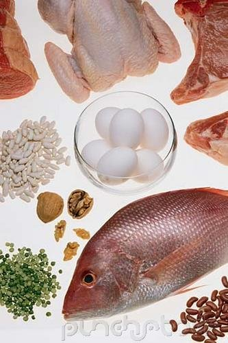 Food Control - Food Production II - Quantities
